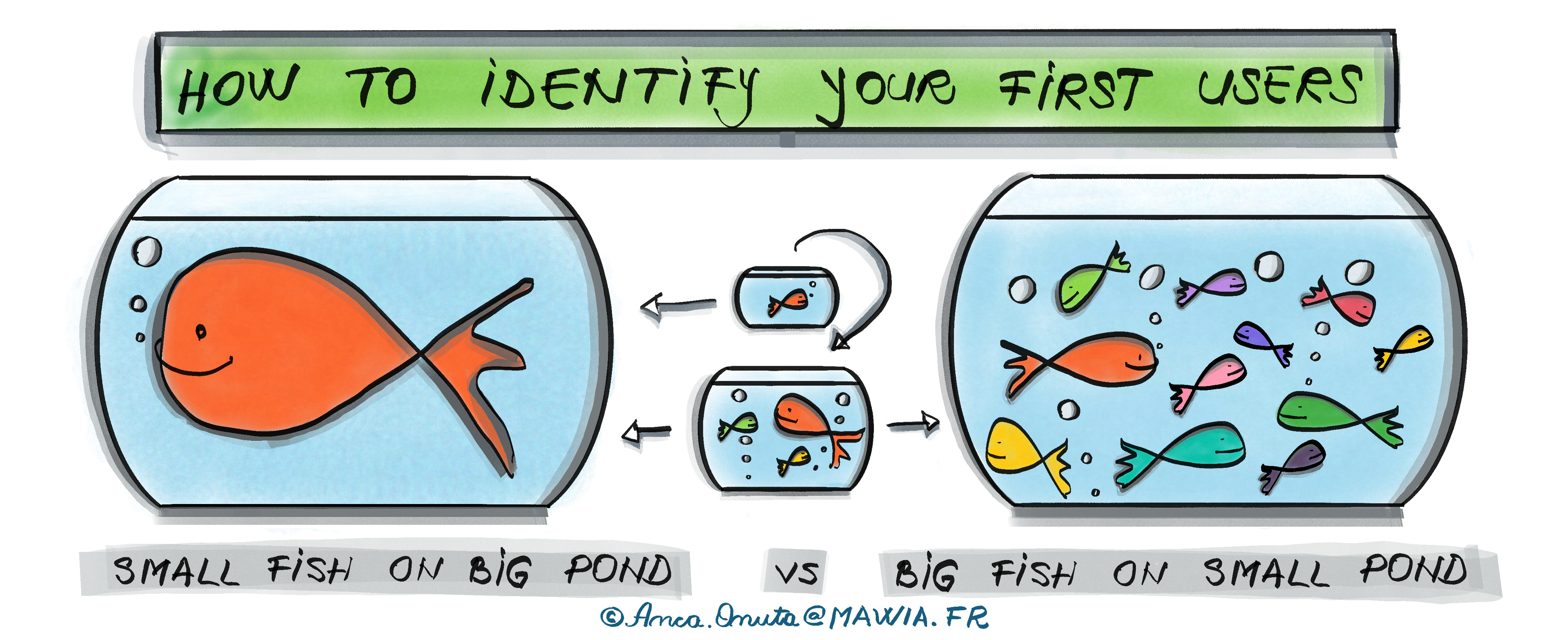 Agile product strategy: small fish in big pond vs big fish in small pond.