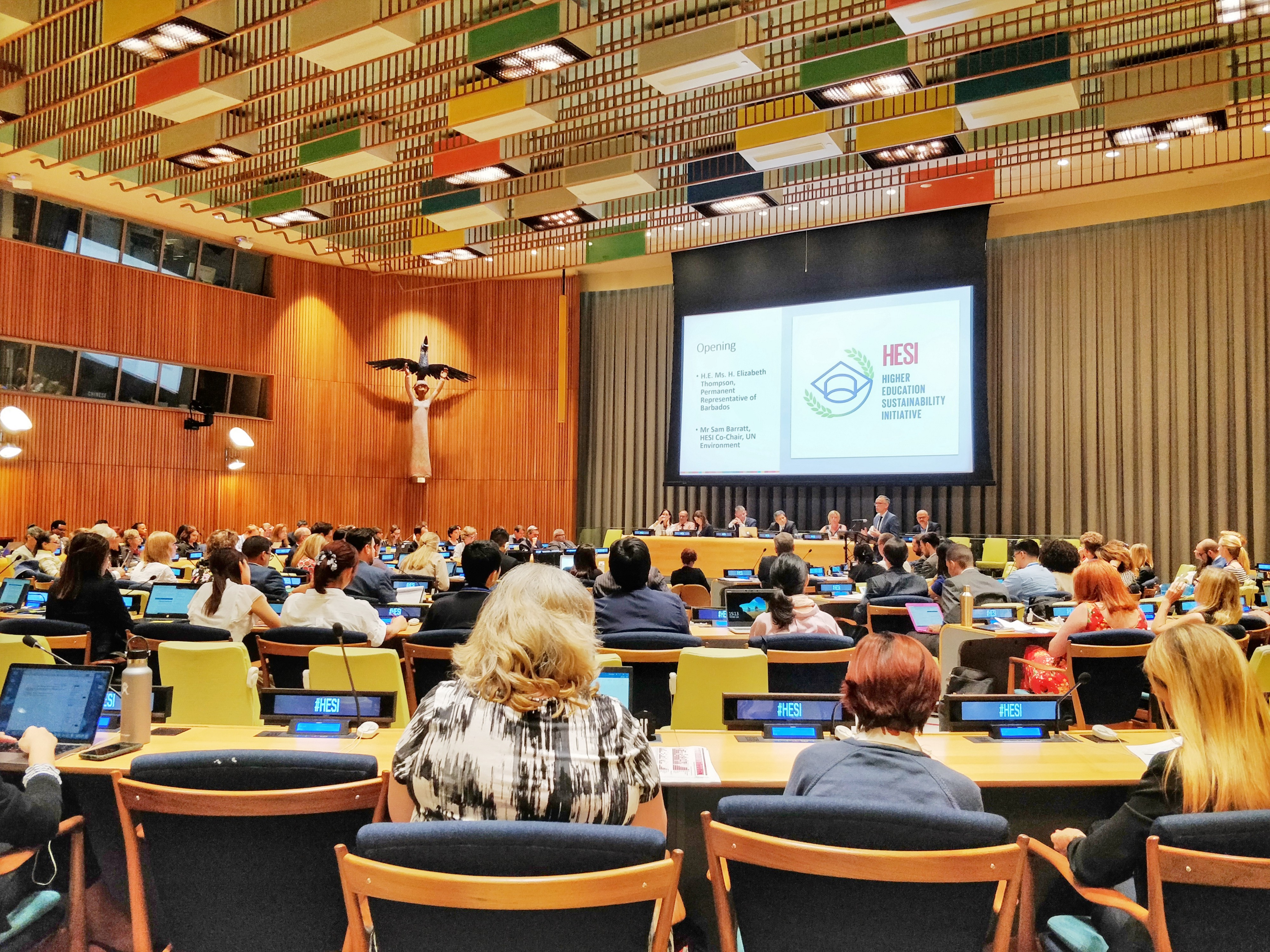 Ycenter at United Nations HESI SDG event