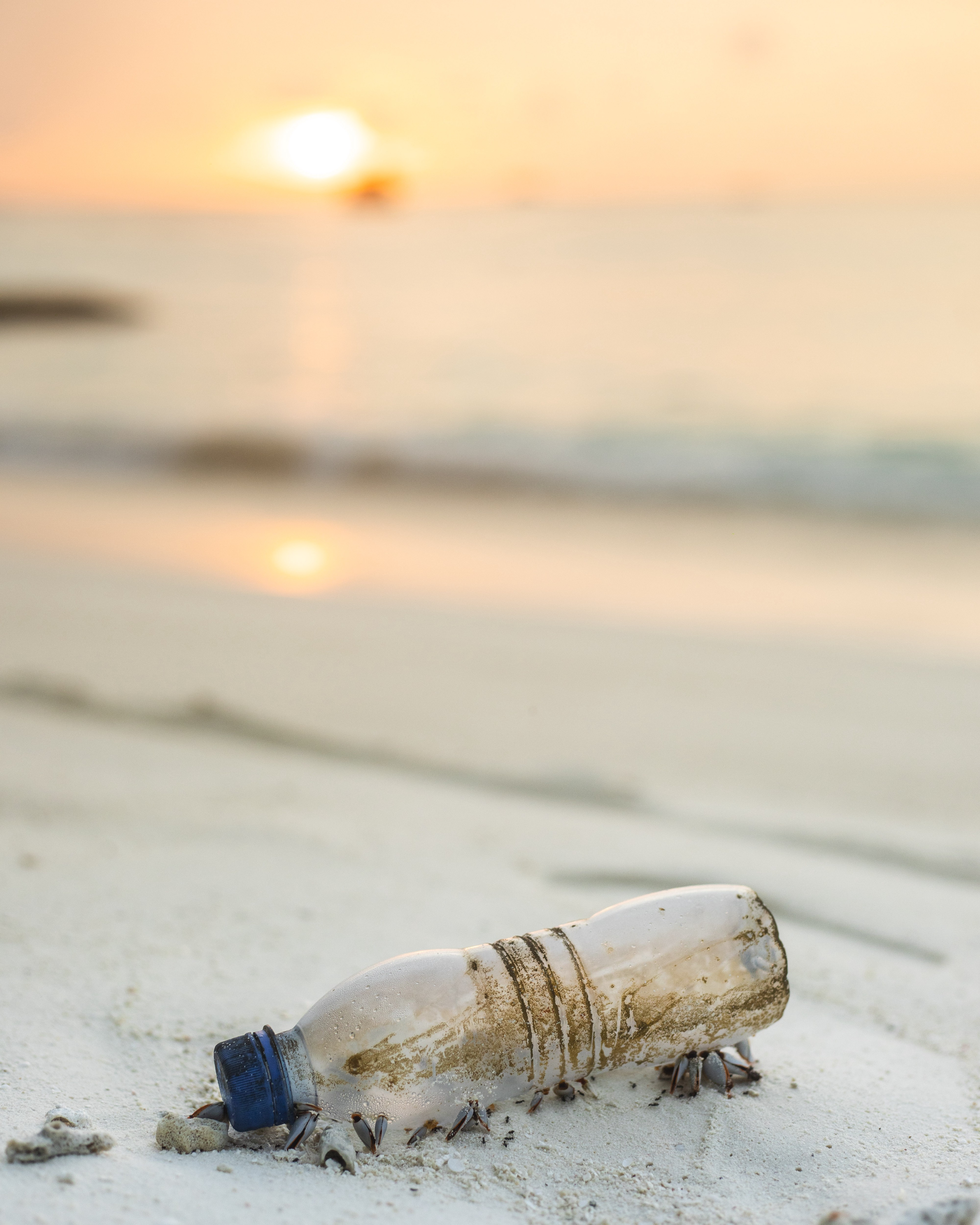 How to fix the Plastic Waste Crisis