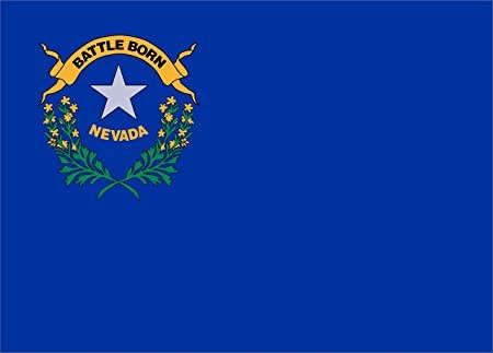 The Nevada state flag.