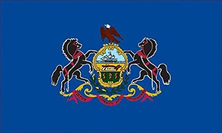 The Pennsylvania state flag