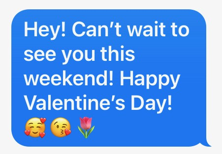 Hey! Can't wait to see you this weekend! Happy Valentine's Day!