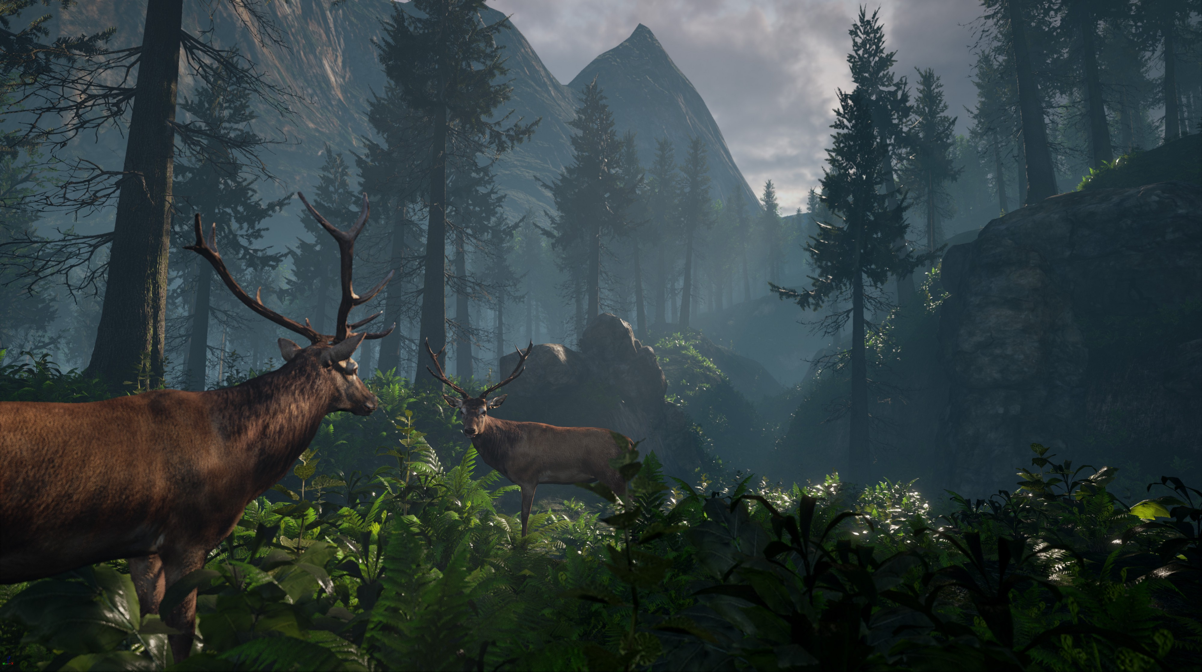 Creating the Audio for an Interactive Virtual Reality Nature