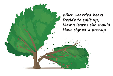 When married bears decide to split up, Mama learns she should have signed a prenup.