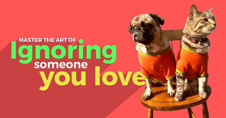 How to master the art of ignoring someone you love?