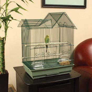 Parakeet Bird Cage Information