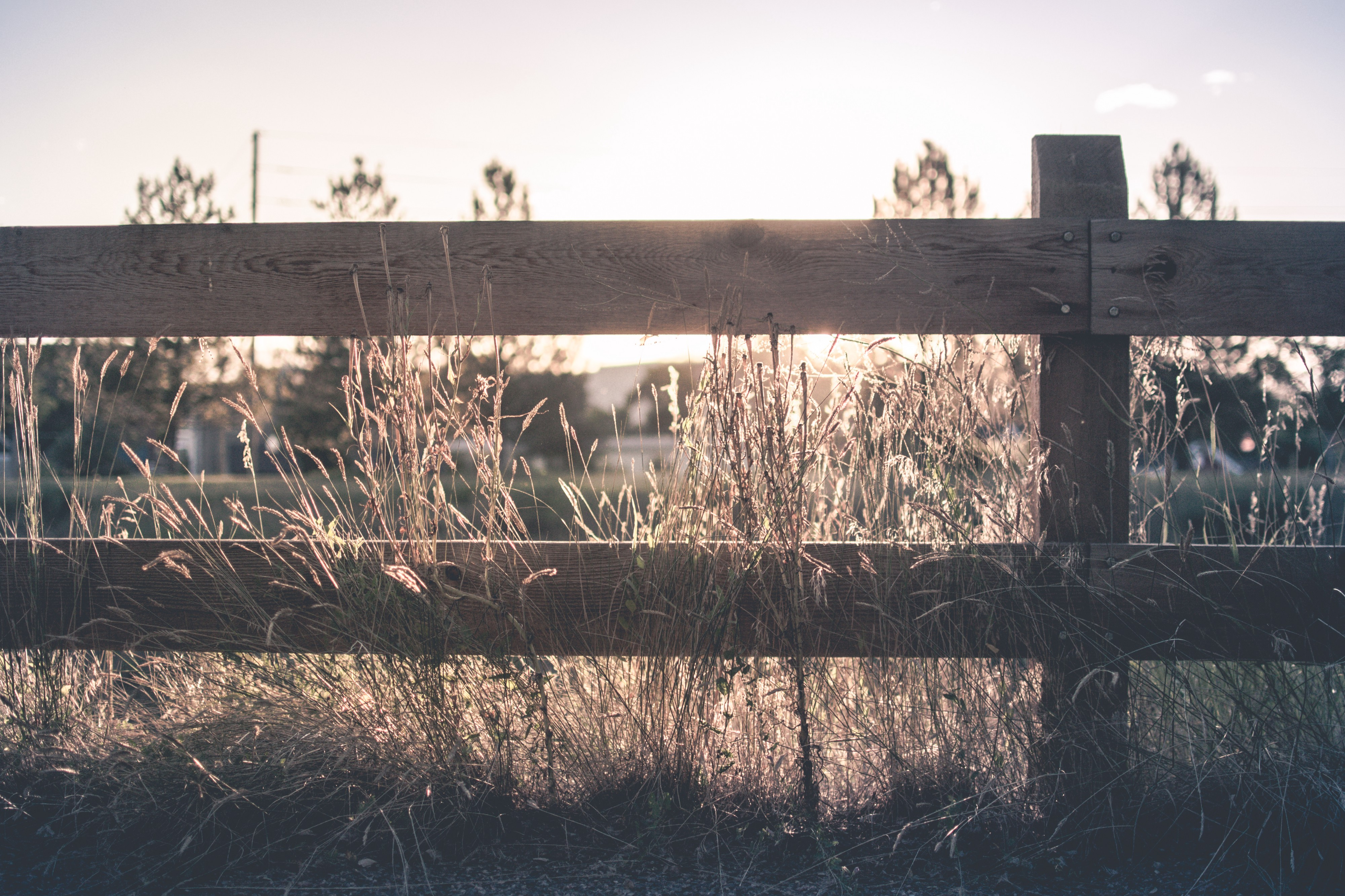 a wooden fence bordering field at sunset