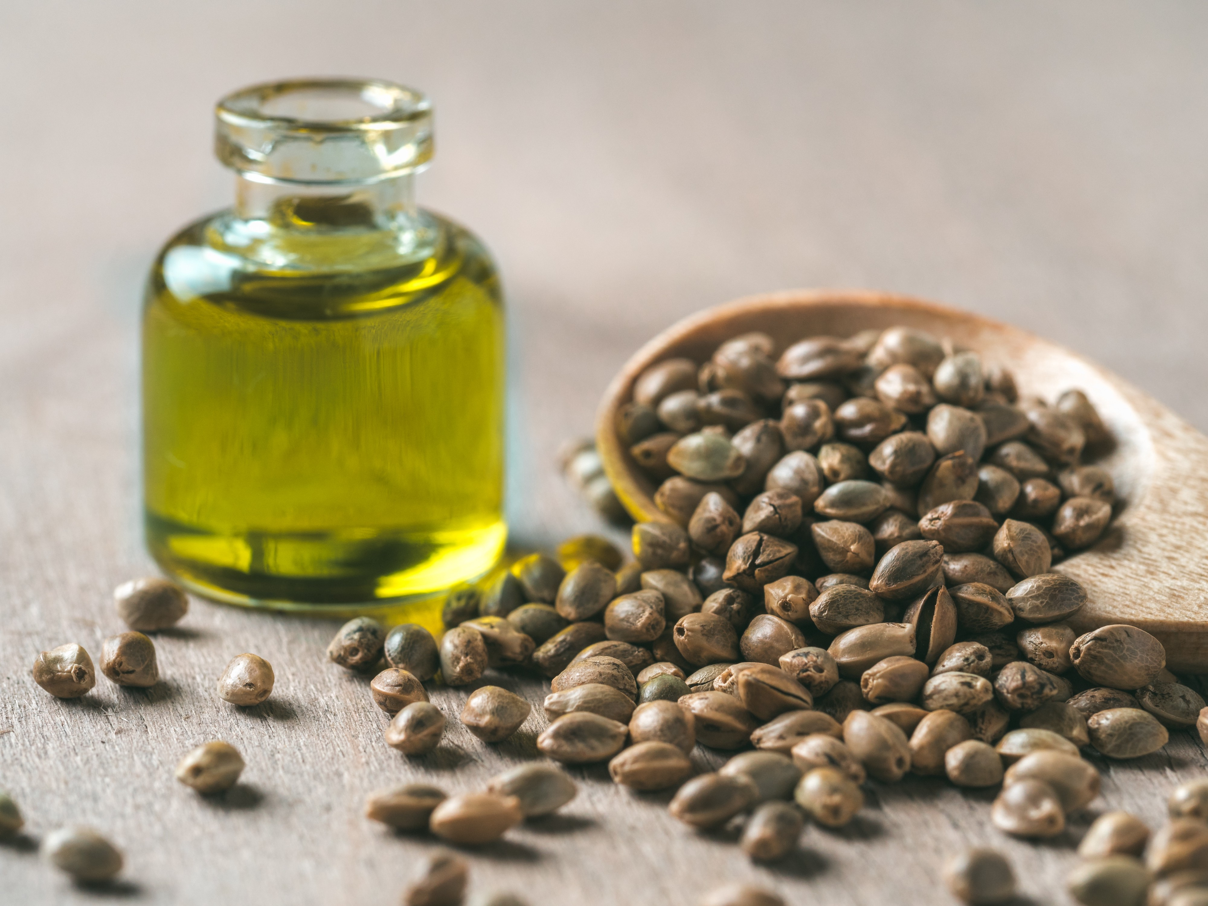 How Is Hemp Seed Oil Made Plus How To Make Hemp Seed Oil At
