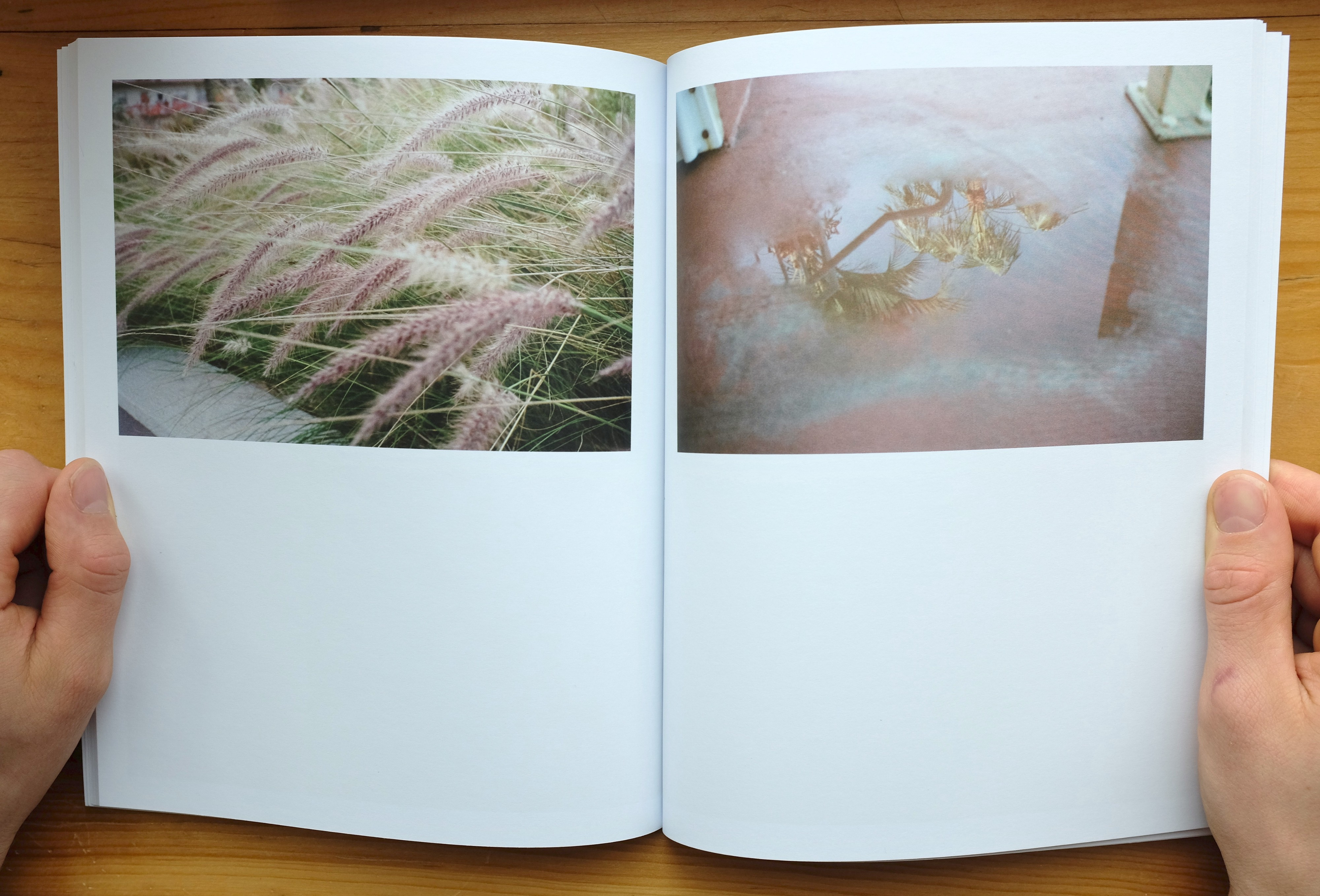 """Uncovering the Stillness of Motion"" photobook by Roslyn Julia"