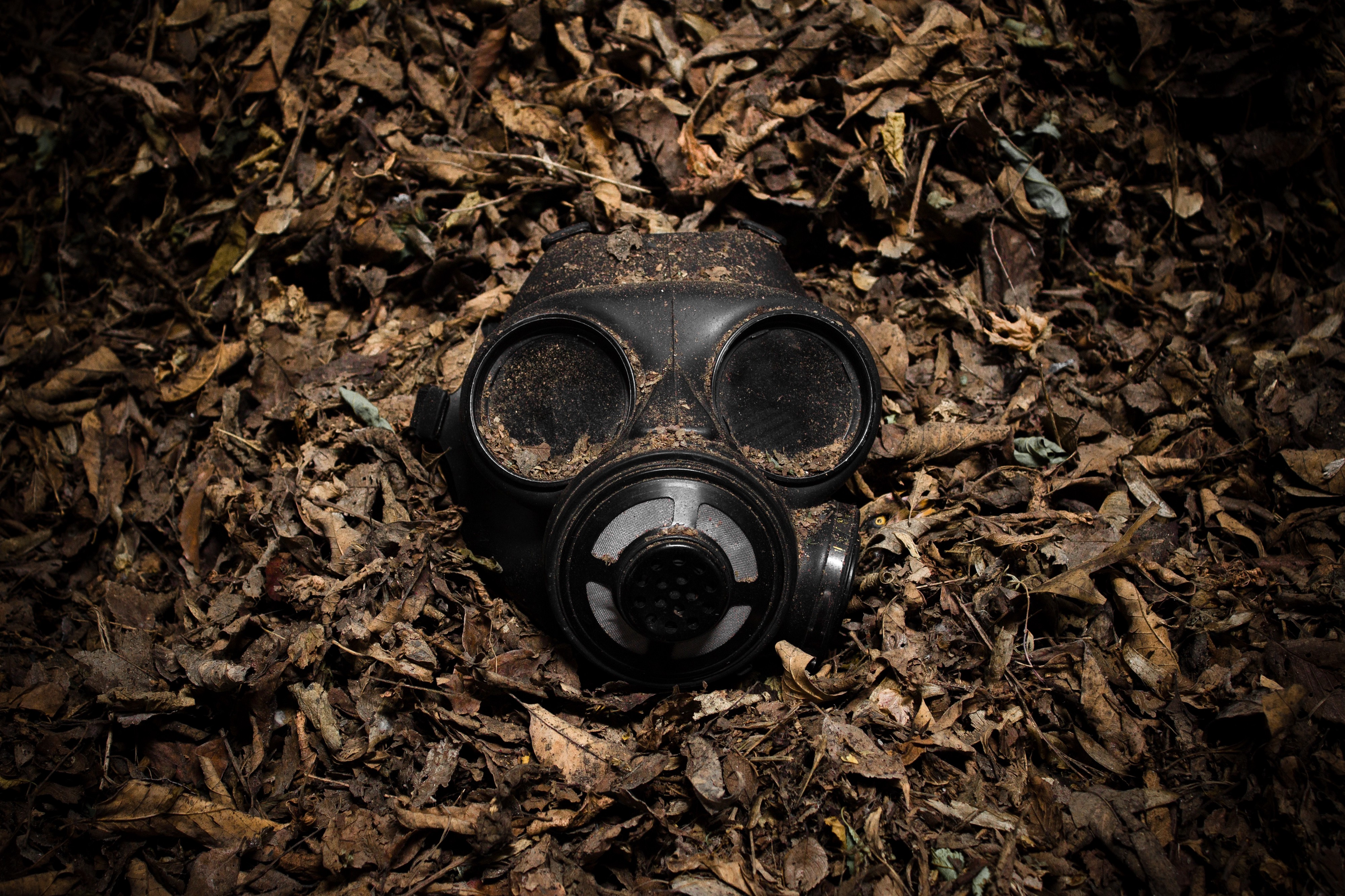 Generational Toxicity: How Your Parent's Toxin Exposure Is