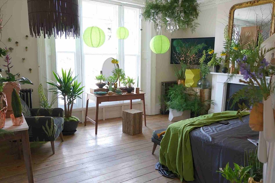 What Plants Are Best For My Interiors