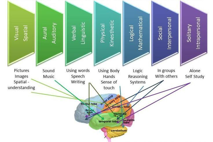The Myth Of Learning Styles Debunked >> Understanding Your Individual Learning Styles In Relation To