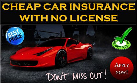 Insurance Companies That Accept No License