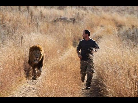 Man running from a lion