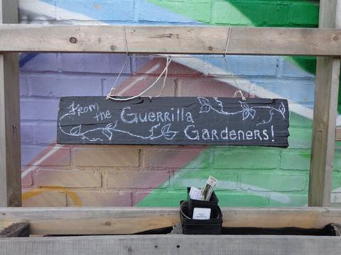 🌱 GUERRILLA GARDENING- GROWING FOR THE COMMON GOOD! 🌱