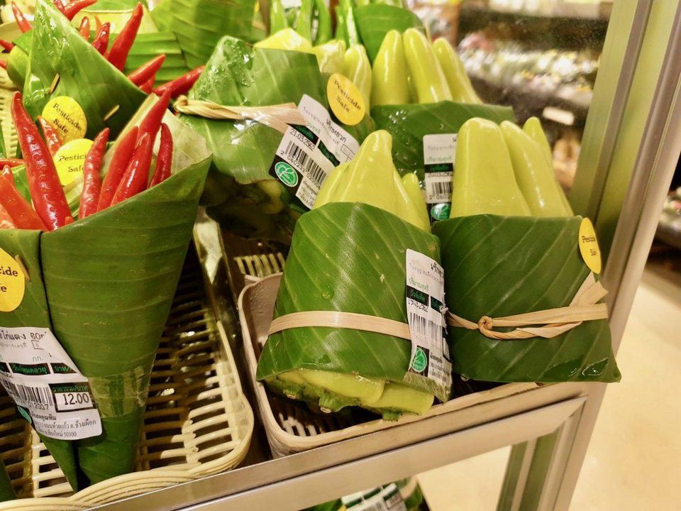 Praise For The Banana Leaf The Rise Of A Not So New Alternative To By Nadine Zylberberg 2030 Magazine The Stuff Of Stars Medium