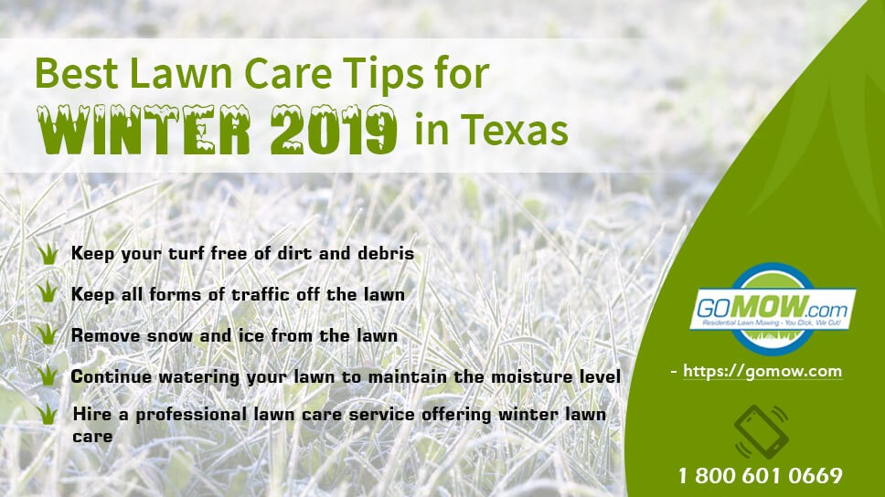 Lawn Care Tips For Winter 2019 In Texas