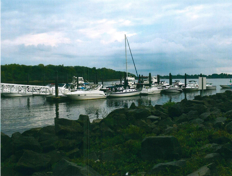 a line of docked boats