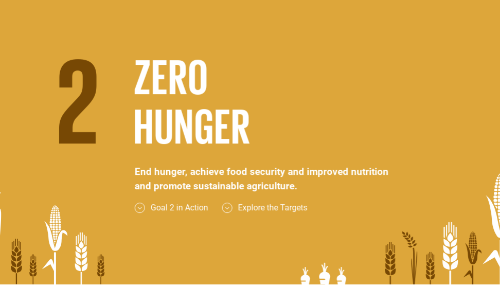 Image result for ZERO HUNGER