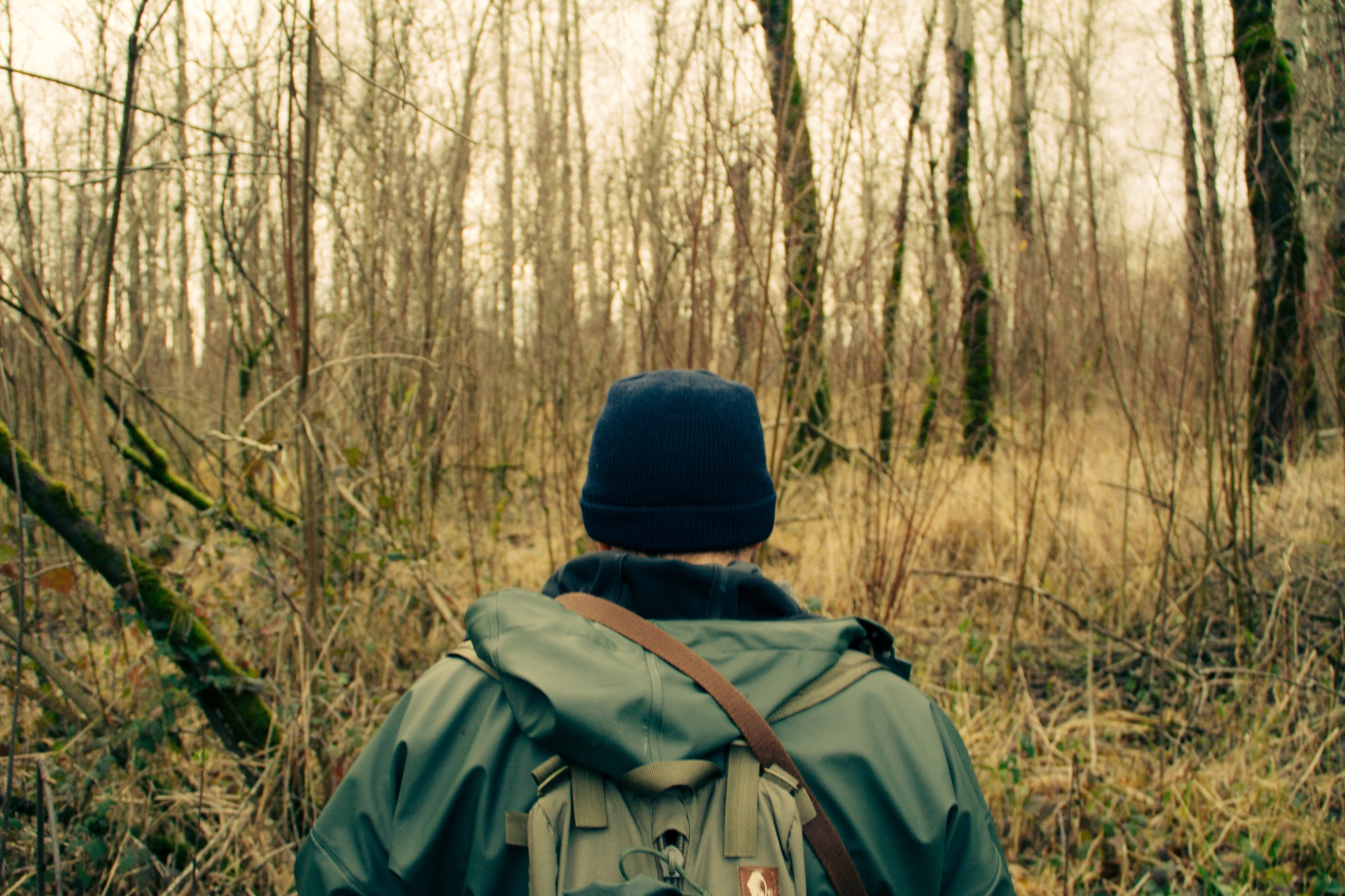 A man in outdoor clothes walking into a wooded forest.