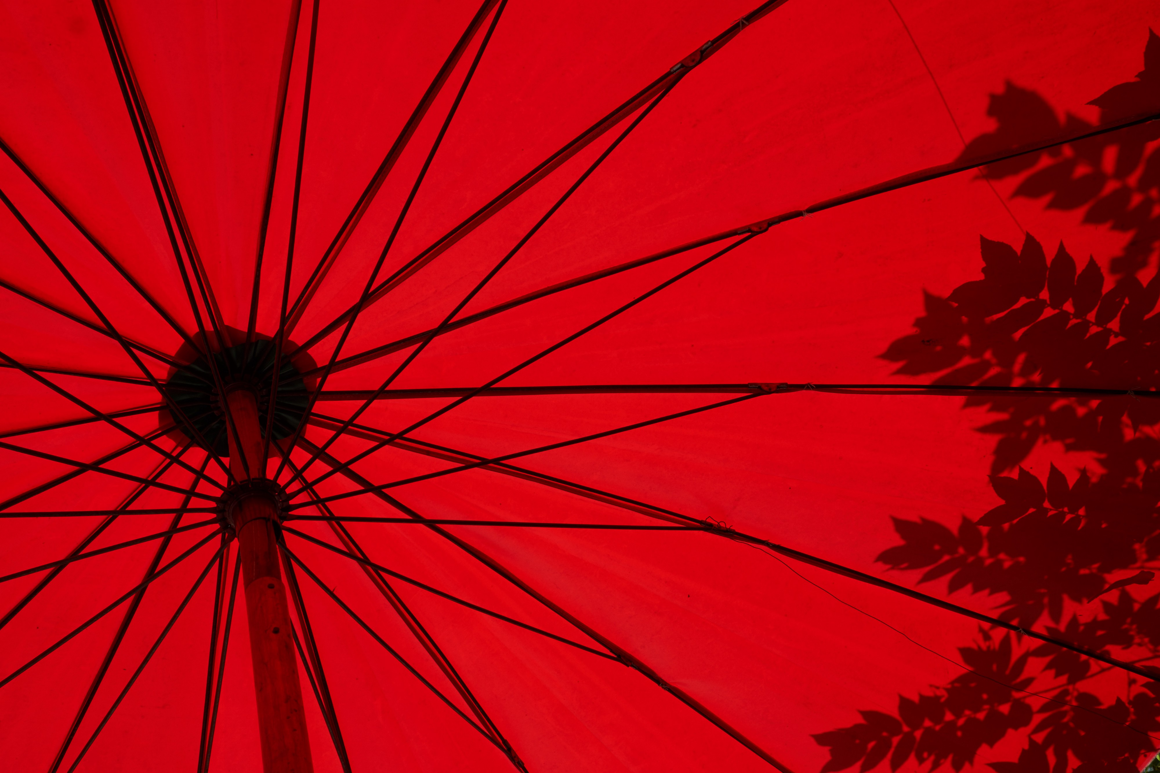 Photo of the underside of a red umbrella with shadows of leaves on the right side. Photo by Loïc Fürhoff.