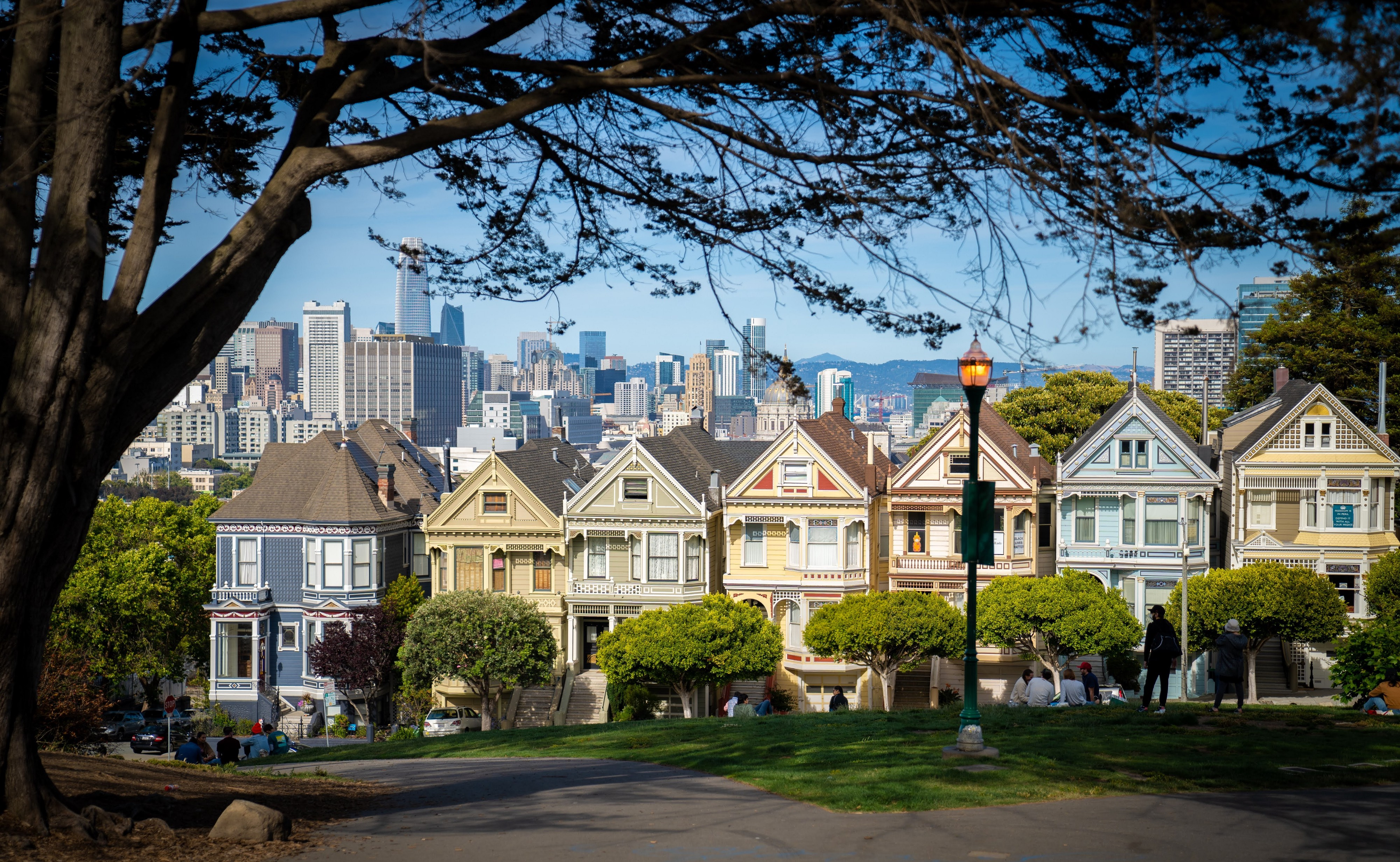 Photo of the colorful homes near Alamo Square Park in San Francisco by Minko Gechev