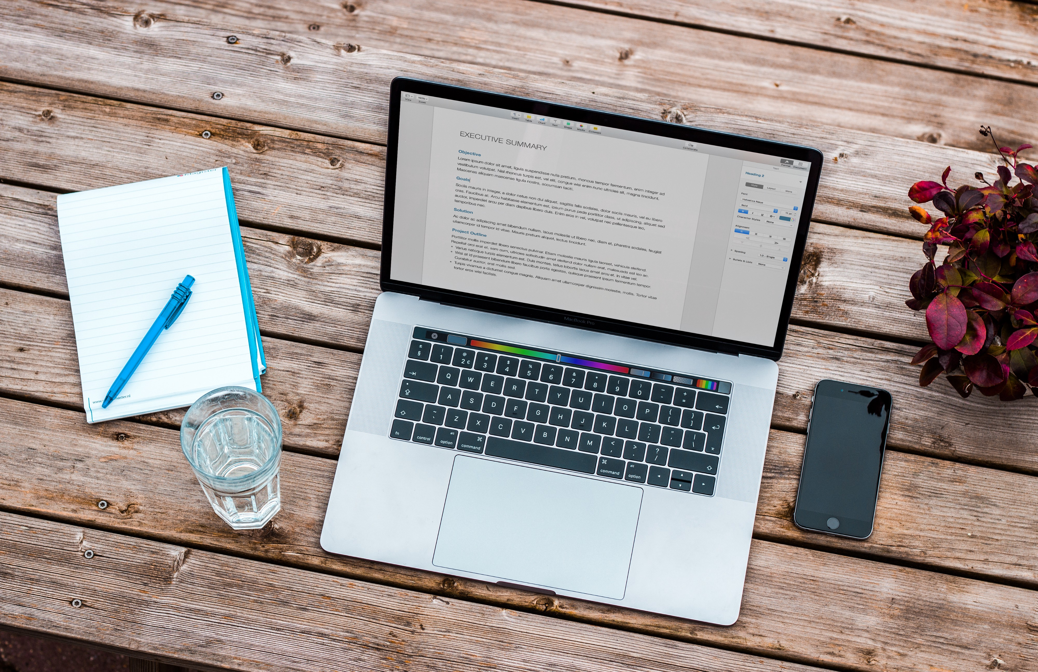 Macbook on wooden table showing resume on screen, plus notebook, pen, phone, plant and glass of water next to it