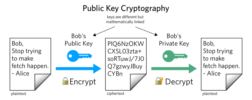 Build RSA Asymmetric Cryptography Generator (Go) | Better Programming