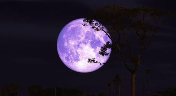 The buck moon lit up brightly in the sky