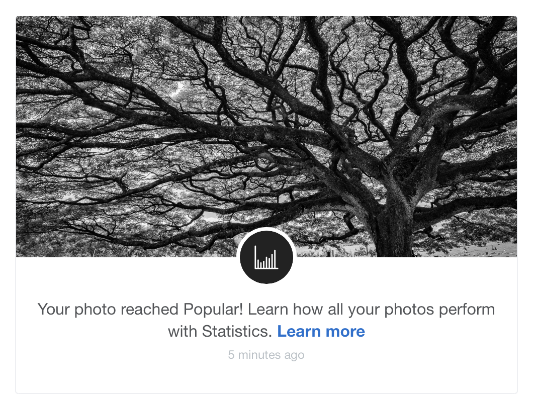 After a while, the same photo got promoted to the Popular dynamic gallery