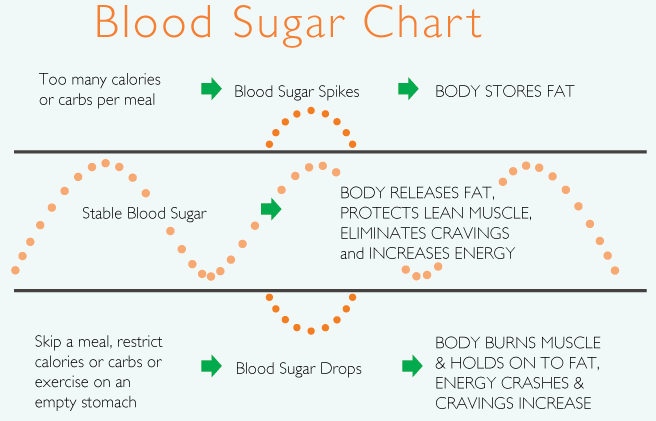 a graph showing how our blood sugar goes up and down depending on what we eat