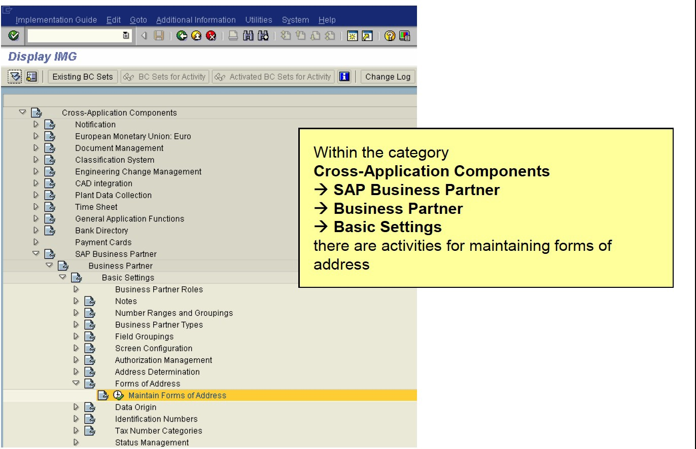 FS315 FS-CD Customizing Part 1: Business Partner - Diego